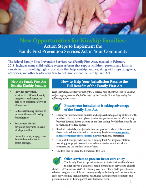 New Opportunities for Kinship Families: Action Steps to Implement